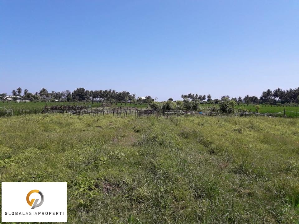 1 12 - PERFECT SPOT LAND IN LOMBOK FOR SALE