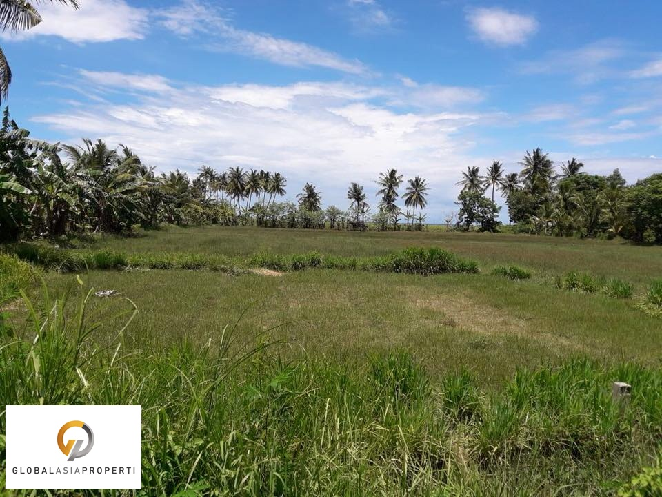 1 13 - PERFECT LAND FOR BUILDING IN LOMBOK FOR SALE