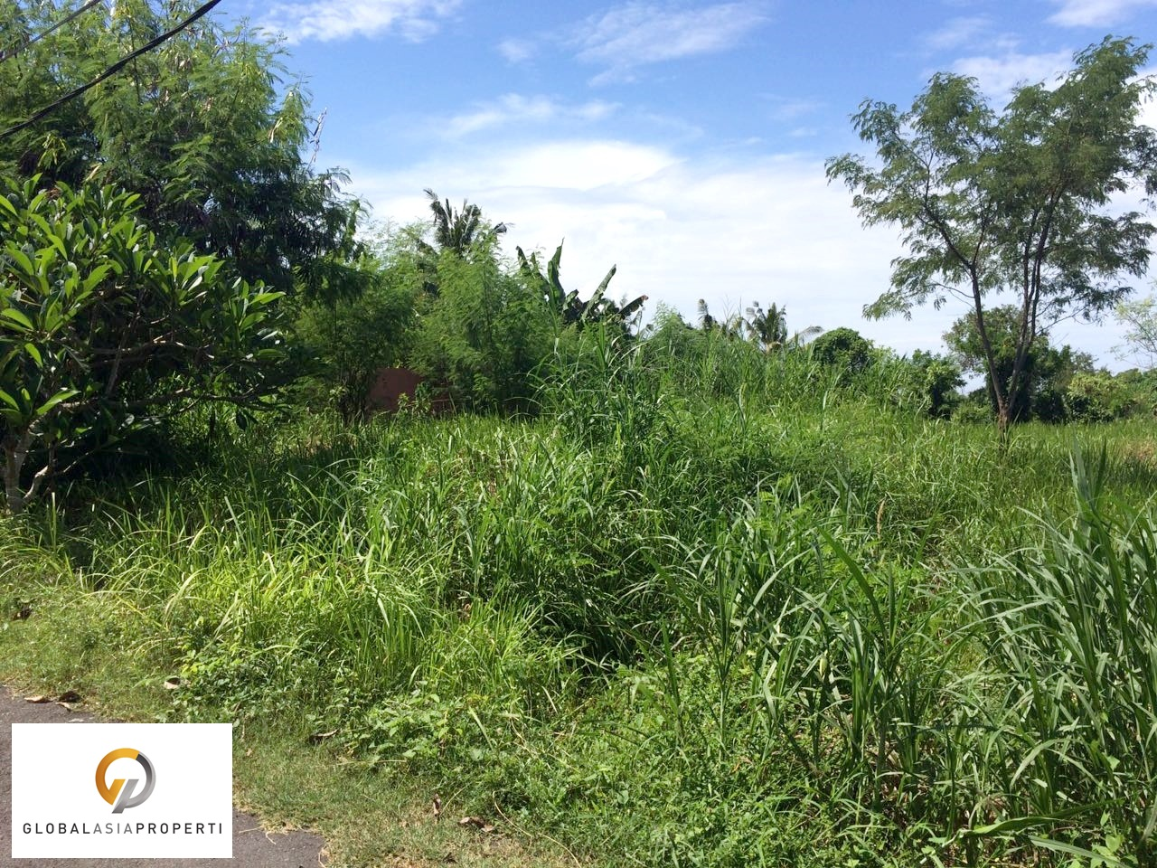 IMG 20180106 WA0015 - PERFECT LAND WITH GOOD ACCESS IN GIANYAR FOR SALE