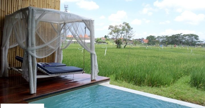 SAM 4217 720x380 - BEAUTIFULL VILLA WITH RICEFIELD VIEW IN BABAKAN CANGGU FOR LEASE