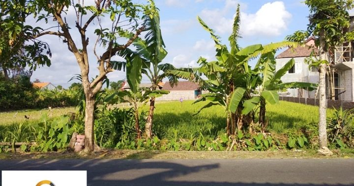 6828196d 85d6 4ef4 b973 6c918910d6fd 720x380 - STRATEGIC LAND AND SUITABLE FOR BUILDING VILLA IN UMALAS FOR LEASE
