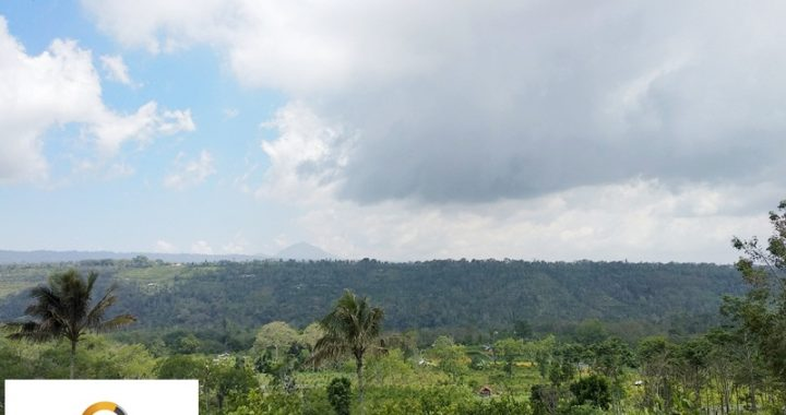 IMG 20191123 123728 720x380 - PERFECT LAND FOR INVESTMENT IN PLAGA BADUNG FOR SALE